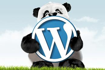 Optimiser la taille des images de votre site web : TyniPNG pour WordPress