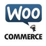 Debug Party pour Doliwoo, extension WordPress pour WooCommerce et Dolibarr